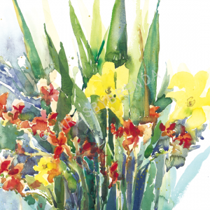 Crocosmia & Day Lilies