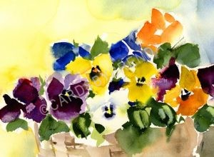 Basket of Pansies