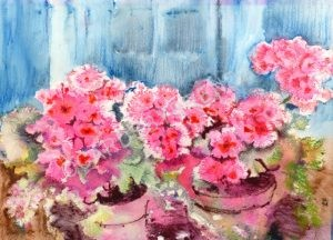 Geraniums on the Step