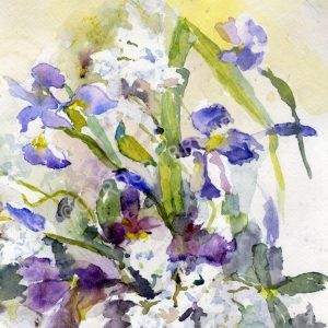 Phlox and Irises